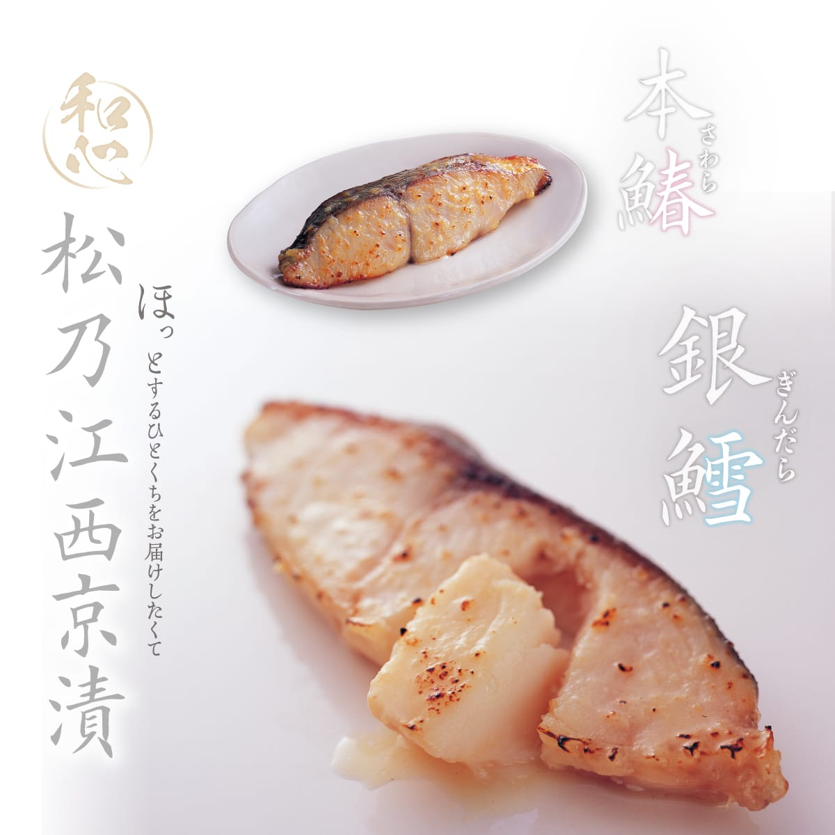 松乃江特選 銀鱈・本鰆西京漬詰合せ