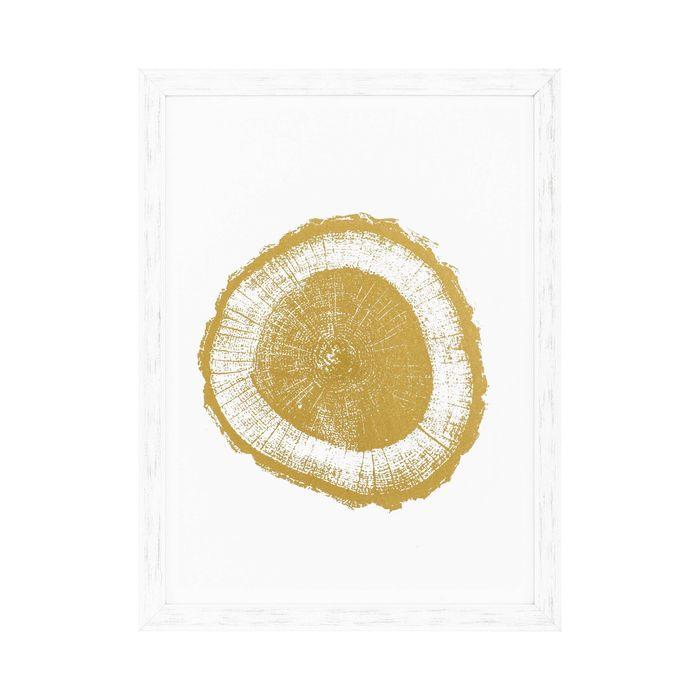 EICHHOLTZ_Prints EC257 Gold Foil: Tree Rings set of 4