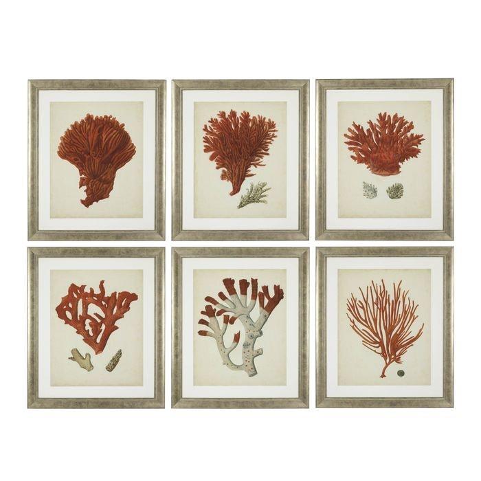 EICHHOLTZ_Prints EC258 Antique Red Corals set of 6