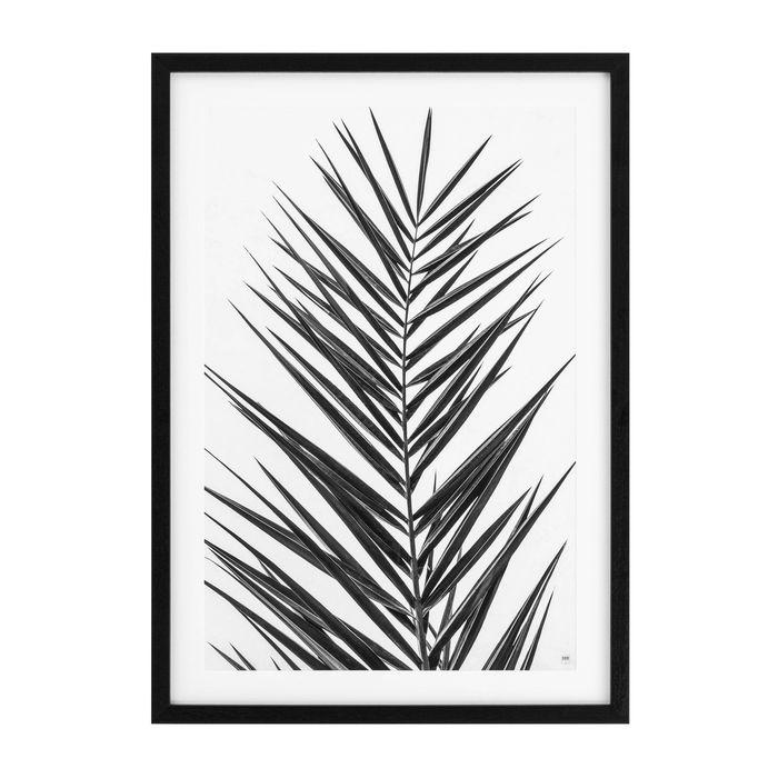 EICHHOLTZ_Prints EC274 Palm Leaves set of 2