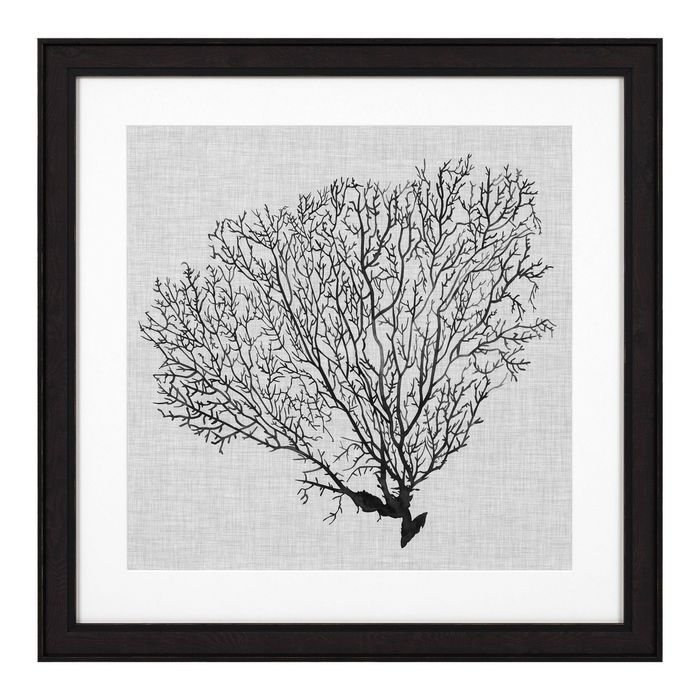 EICHHOLTZ_Prints EC 289 Shadow Sea Fans set of 4