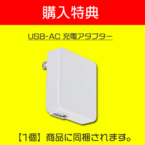 USBダイレクトプレーヤー[UDP-001] パソコン要らず!USB接続で直接音声再生|ペン型ボイスレコーダー/ICレコーダー専用プレーヤー VR-P003Rボイスレコーダー|MEDIKダイレクトだけの購入特典 USB ACアダプター付き|MEDIK(メディク)