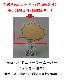 【選べる!お得なセット品】手書きPOPカード[1種類]+ソーラームーバー(ソーラー振子)