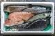 5,000円|おまかせ鮮魚BOX