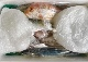 5,000円 おまかせ鮮魚BOX