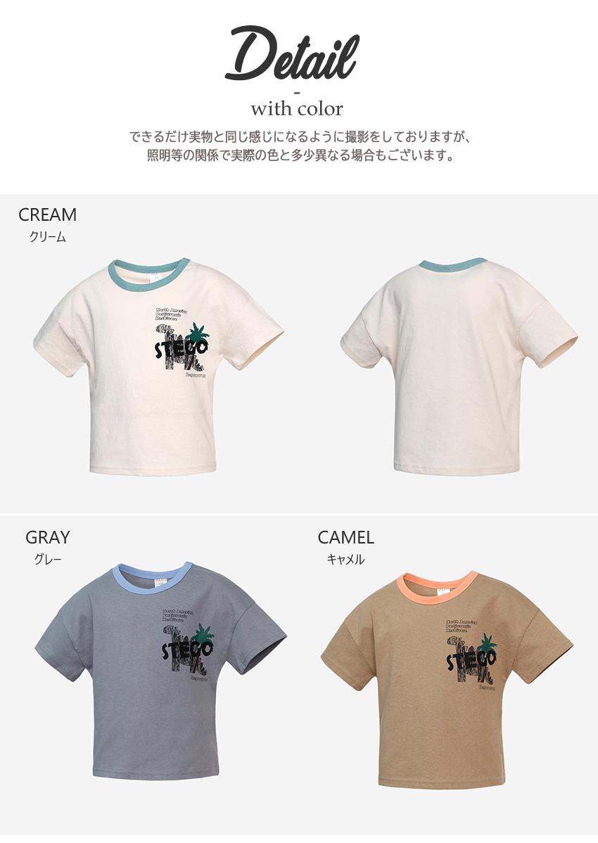 ステゴTシャツ