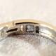 メモリアルリングMR14 地金:Pt900 (プラチナ)〜遺骨リング ,完全防水の指輪〜