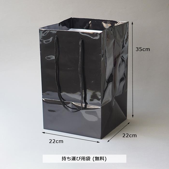 12本の赤バラの花束とガラス花瓶セット(モカ花瓶×ドット黒リボン)