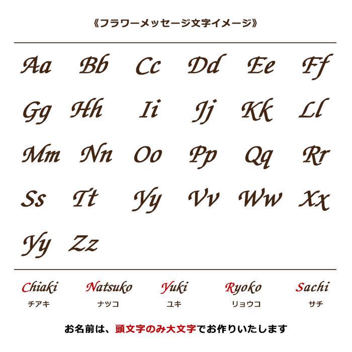 【プロポーズ推奨・シンデレラのガラスの靴】ピンク