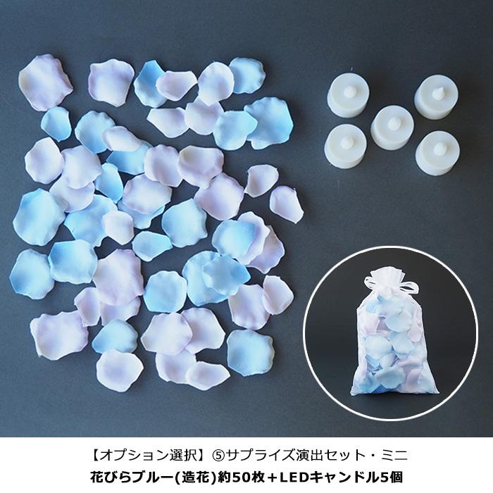 【シンデレラのガラスの靴】オーシャンブルー