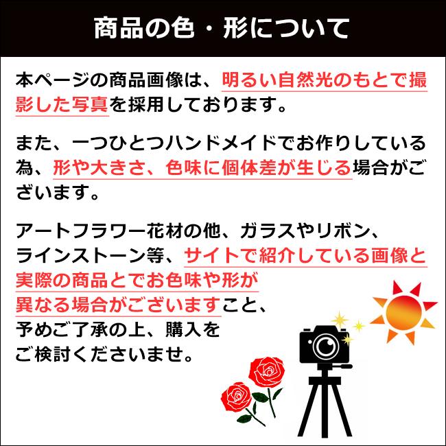 数量限定【プロポーズ・記念日・誕生日】ローズベアー・カップル(男女のバラ製テディベア)