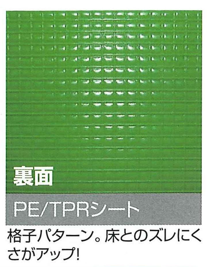 【法人限定商品】プラベニソフト 両面NS ロールタイプ (2本)