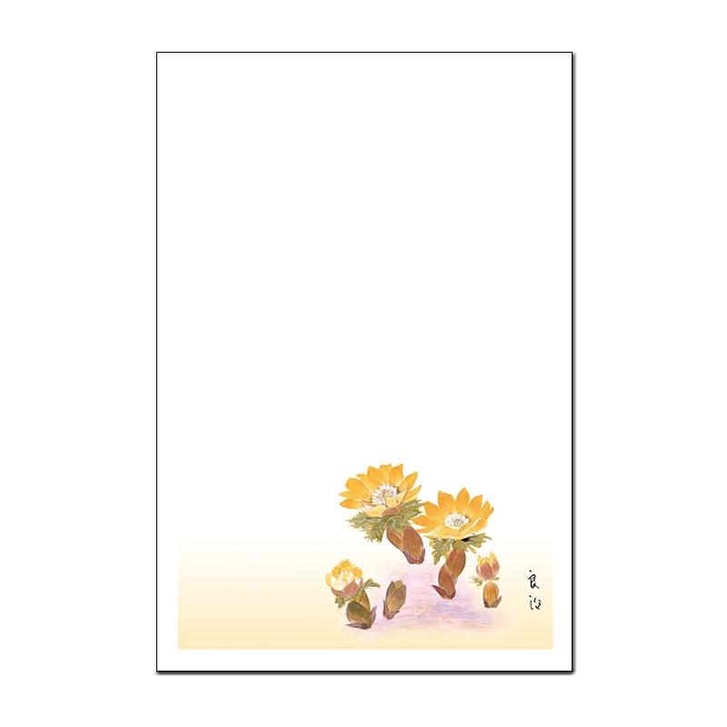 お年玉つき絵葉書5枚セット 【福寿草】 �106