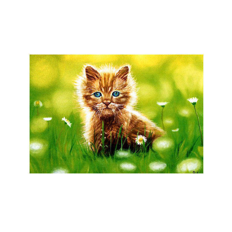 絵葉書 【花畑の猫】 �340
