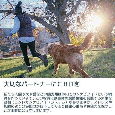 VIGOPET CBD OIL ビーゴペット CBD オイル CBD200mg 容量30ml ペット用 犬 猫