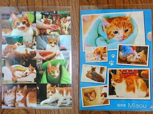 猫部屋オリジナルクリアファイル No.2 3枚セット