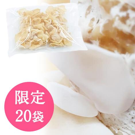 純国産 希少な白いきくらげ 乾燥あらげきくらげ[白]100g☆送料550円【数量限定20袋のみ販売】
