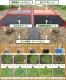【本店限定特典あり】クラピア K5 新品種 10株 すくすく土壌改良セット 完全植栽マニュアル付き 苗10ポット 肥料4種(有機一発肥料、メネデール、簡単土づくりの素、地力の素) 【レビュー特典あり】 雑草対策 送料無料