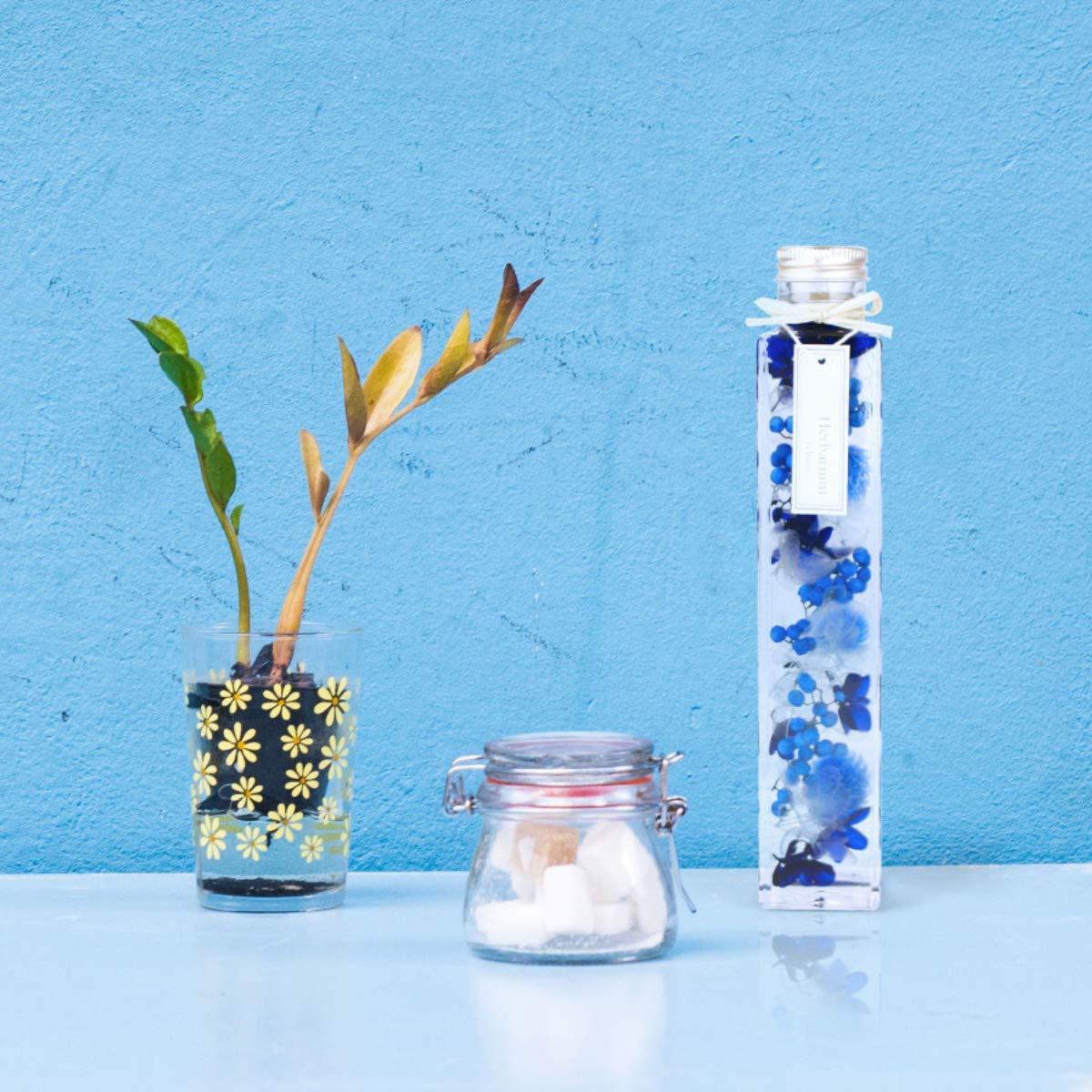 ハーバリウム 角瓶 (1本) ブルー 青 母の日 2020 花 ギフト / 送料無料 日付指定 プレゼント 贈り物 誕生日 結婚 記念日 フェリナス