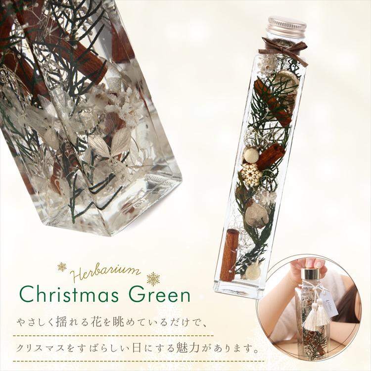ハーバリウム 【クリスマスグリーン】 フラワーギフト クリスマスプレゼント お花 ギフト