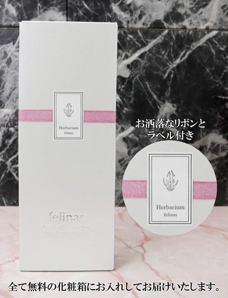 ハーバリウム 角瓶 (2本セット) グリーン & パープル 母の日 2020 花 ギフト / 送料無料 日付指定 プレゼント 贈り物 誕生日 結婚 記念日 フェリナス