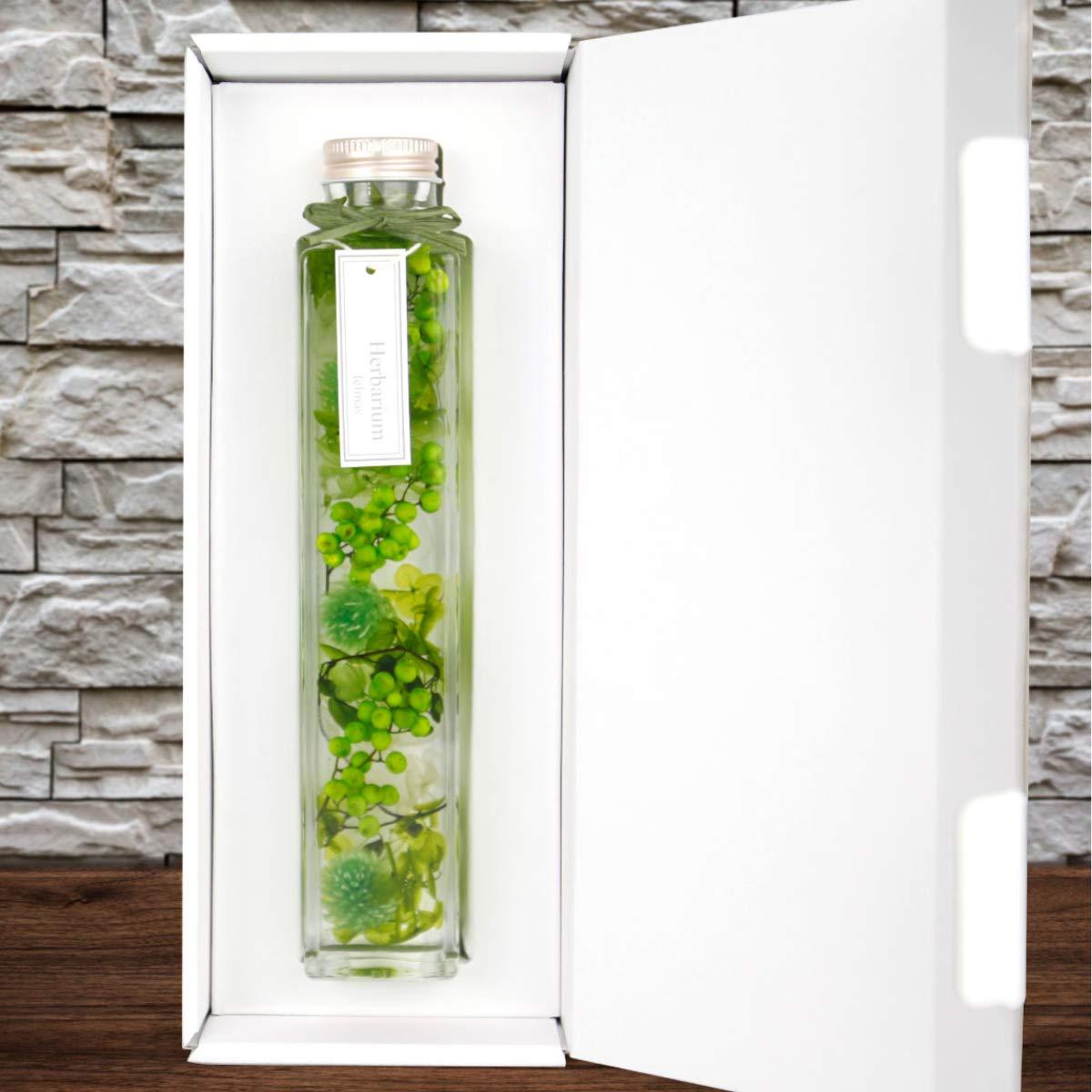 ハーバリウム 角瓶 (1本) グリーン 緑 母の日 2020 花 ギフト / 送料無料 日付指定 プレゼント 贈り物 誕生日 結婚 記念日 フェリナス