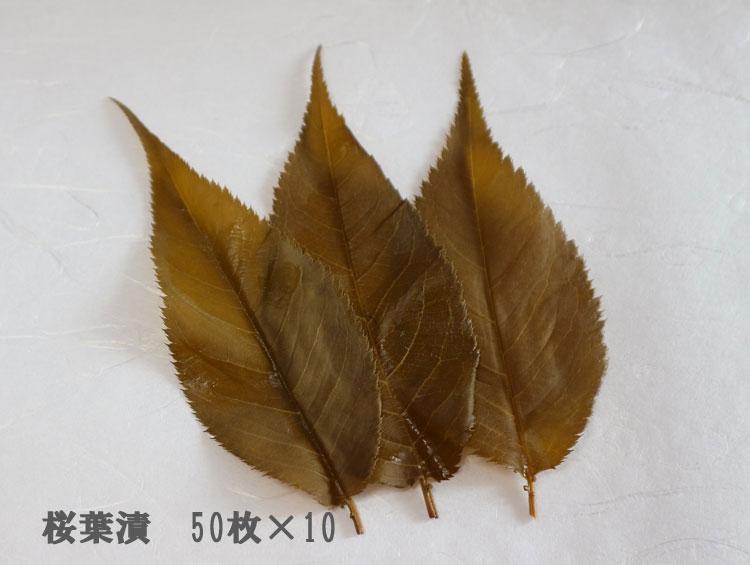 「桜葉漬」50枚×10 無添加 四斗樽仕込【純国産】 ■野村商店