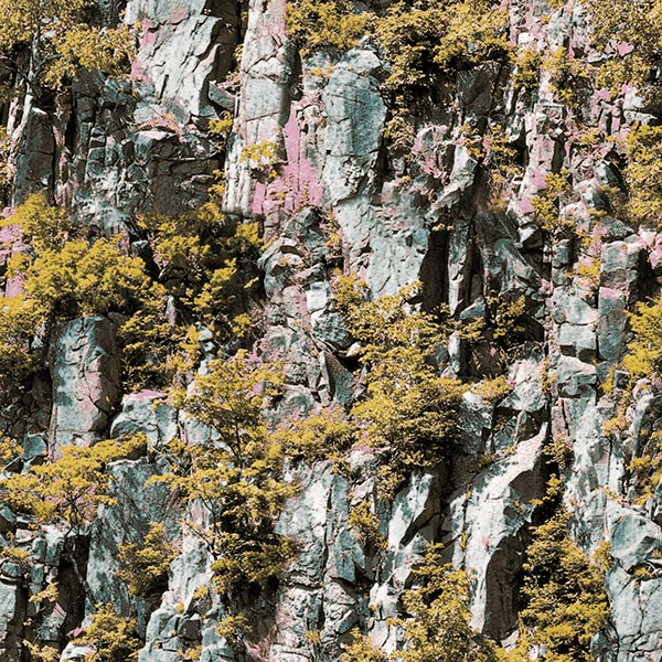 【NWPS506B】 3D壁紙 3Dクロス 崖と植物 53cm×10m