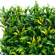 NIG202|フェイクグリーンウォール 人工観葉植物 100×100cm ※ご注文受付後送料別途見積