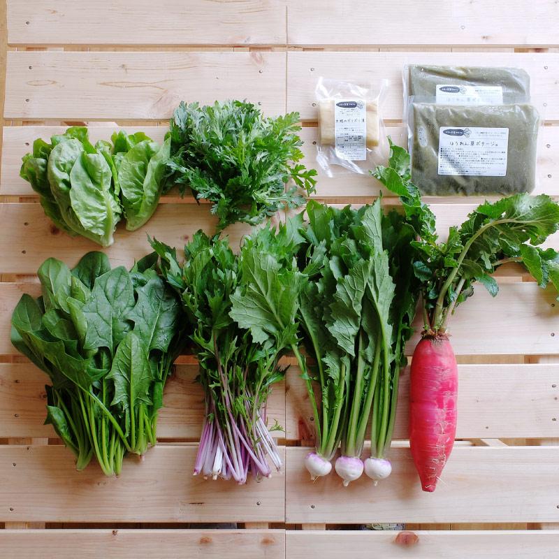 おまかせ野菜 おすそわけセット (1〜2人用) 【月1回 ・ 送料込】