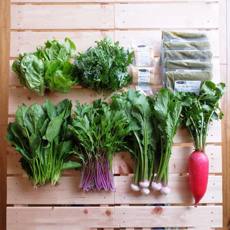 おまかせ野菜 ファミリーセット (2〜4人用) 【月1回 ・ 送料込】