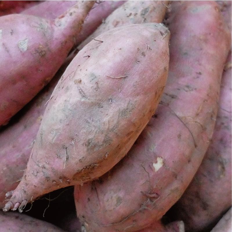 お野菜を食べるスープ 安納芋のポタージュ