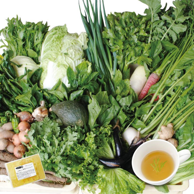 20種類以上の 「お野菜ブイヨンスープ」 200g