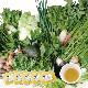 お野菜を食べるスープ 20種類以上の 「お野菜ブイヨンスープ」 200g×5袋セット