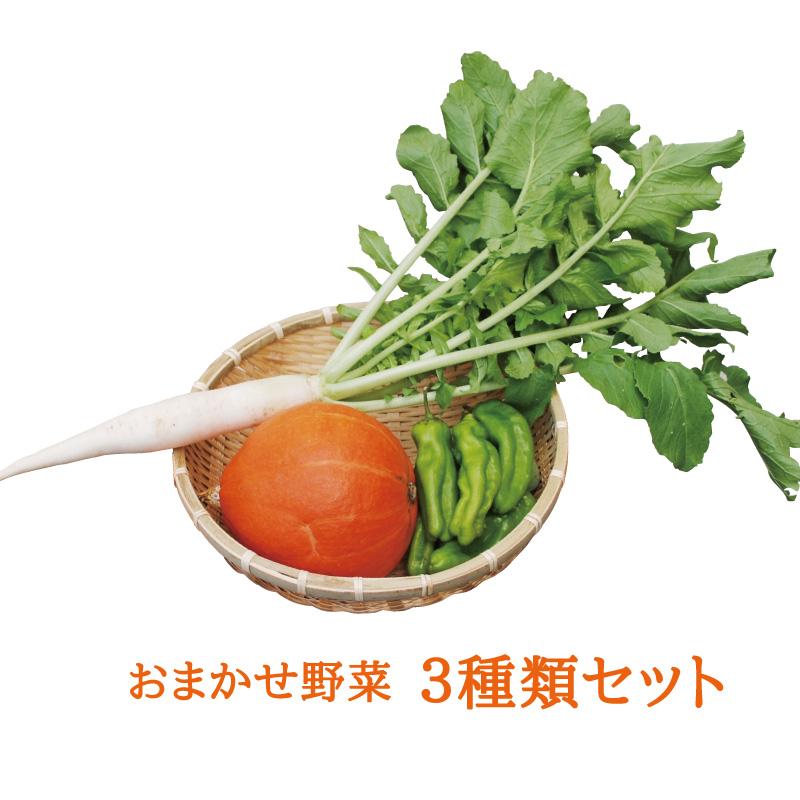 プチ「野菜の旬」セット 【おまかせ3種類】