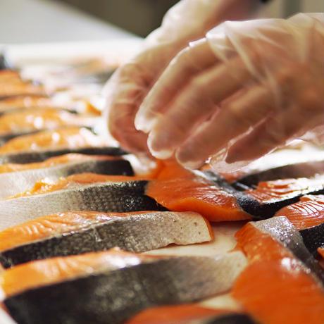 銀鮭〔粕漬け〕6切