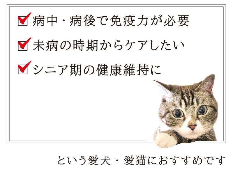 【10%OFF】ペットのハナビラタケ2個セット【メール便送料無料】