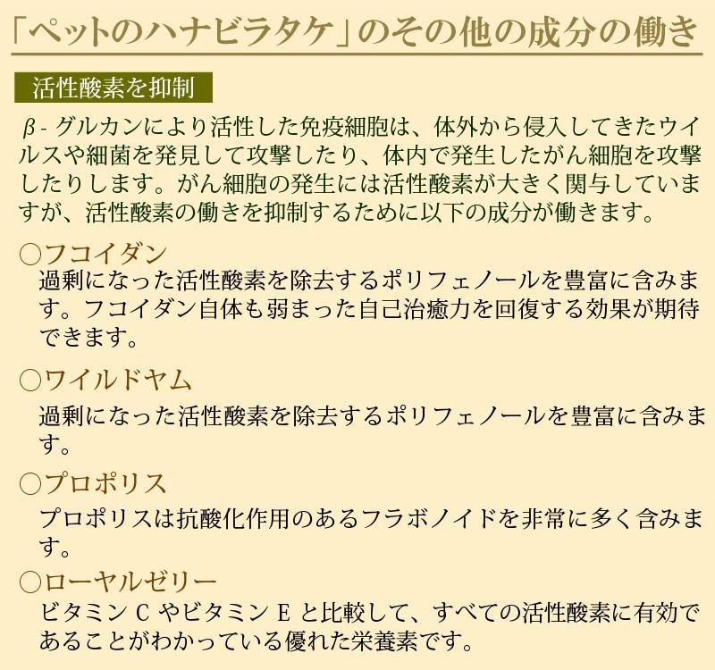 \リニューアル/【20%OFF】ペットのハナビラタケ3個セット【メール便送料無料】