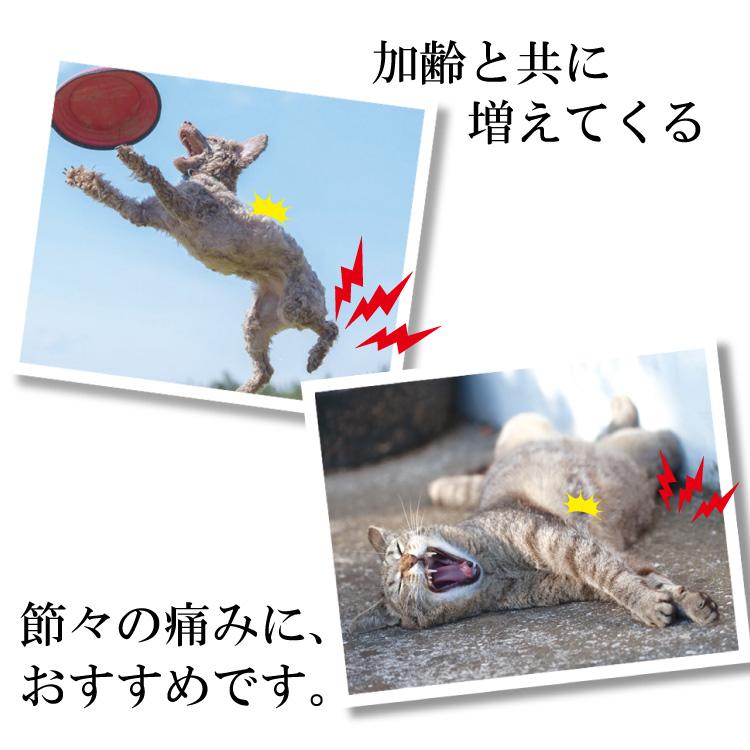 【セットでお得】関節エイド(360g)2個セット