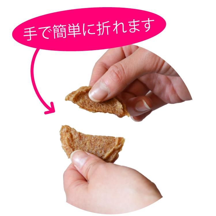 気仙沼産サメ肉コイン