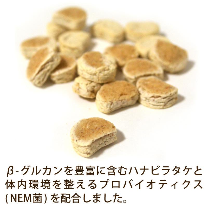 (グルテンフリー)お米のクッキー プレーン味