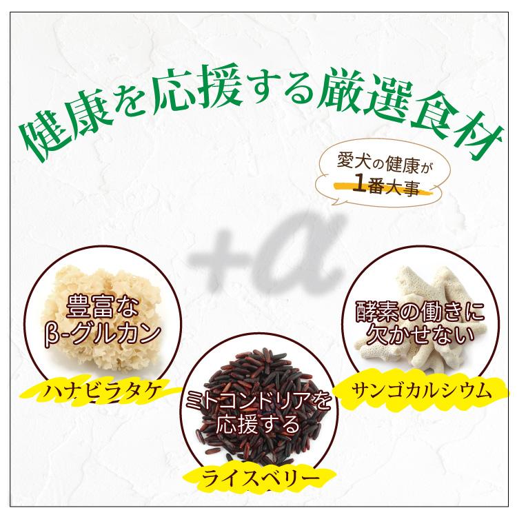こだわりの愛犬食かりかり10個セット(15%OFF)