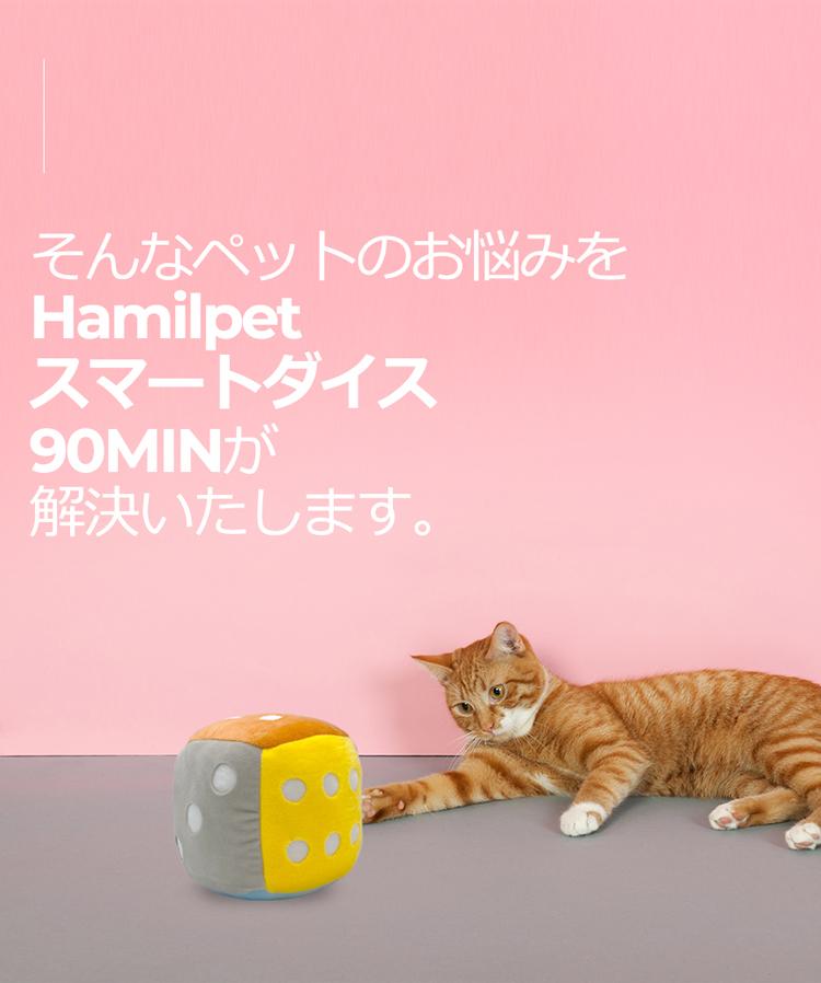ヘミルペット スマートダイス90min 犬のおもちゃ猫のおもちゃ