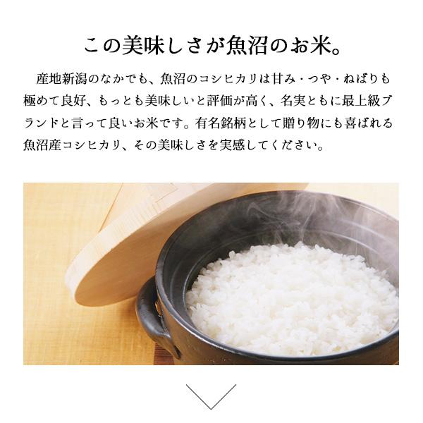 新米 極上魚沼産コシヒカリミニ 白米 令和3年産 (2.5kg)