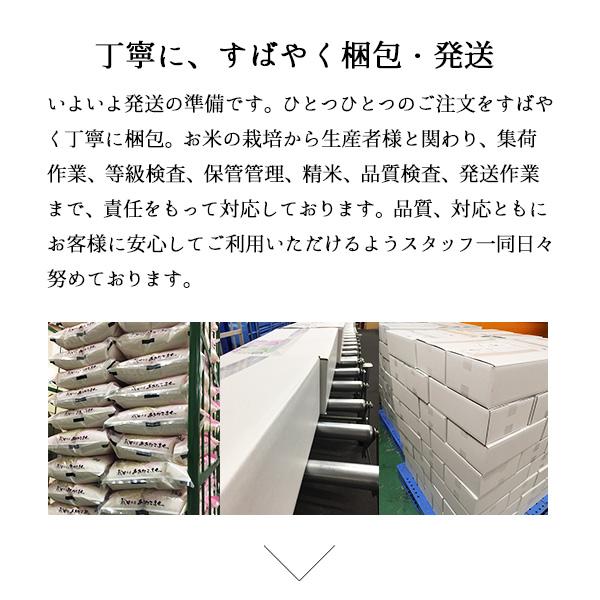新米 極上魚沼産コシヒカリ5kg 白米 令和3年産
