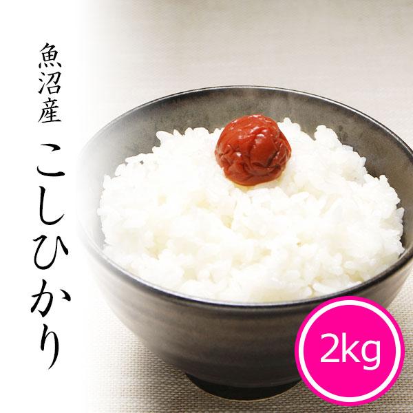 魚沼産コシヒカリ2kg 白米 令和2年産