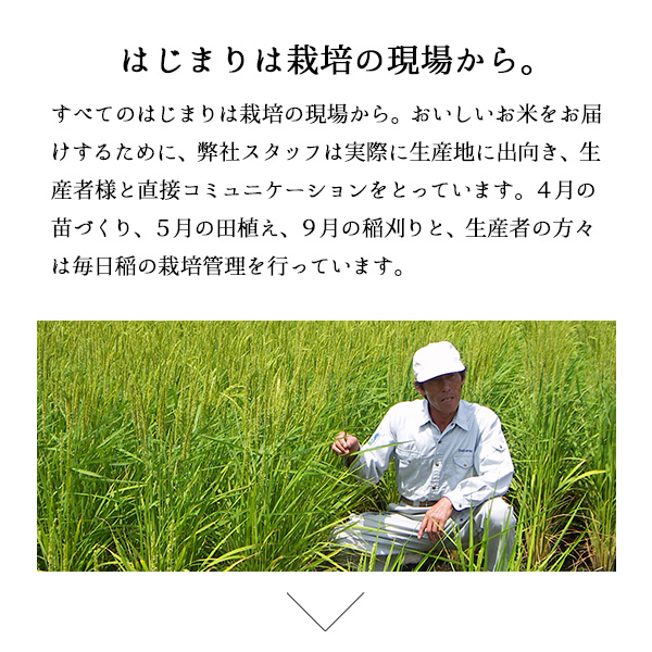 新米 魚沼産コシヒカリ5kg 白米 令和3年産