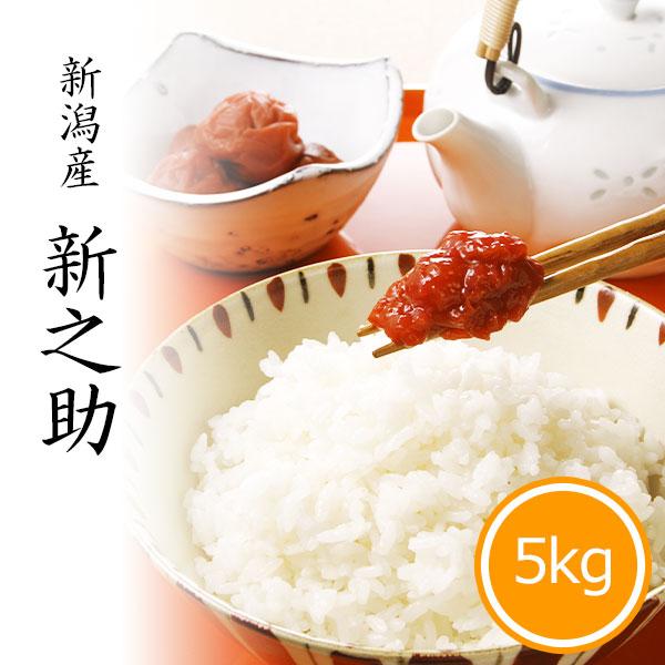 新之助5kg 白米 令和2年産