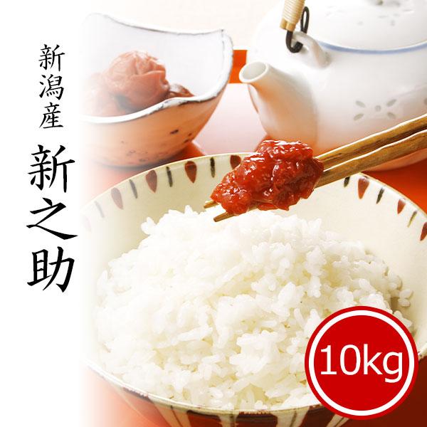 新之助10kg 白米 令和2年産