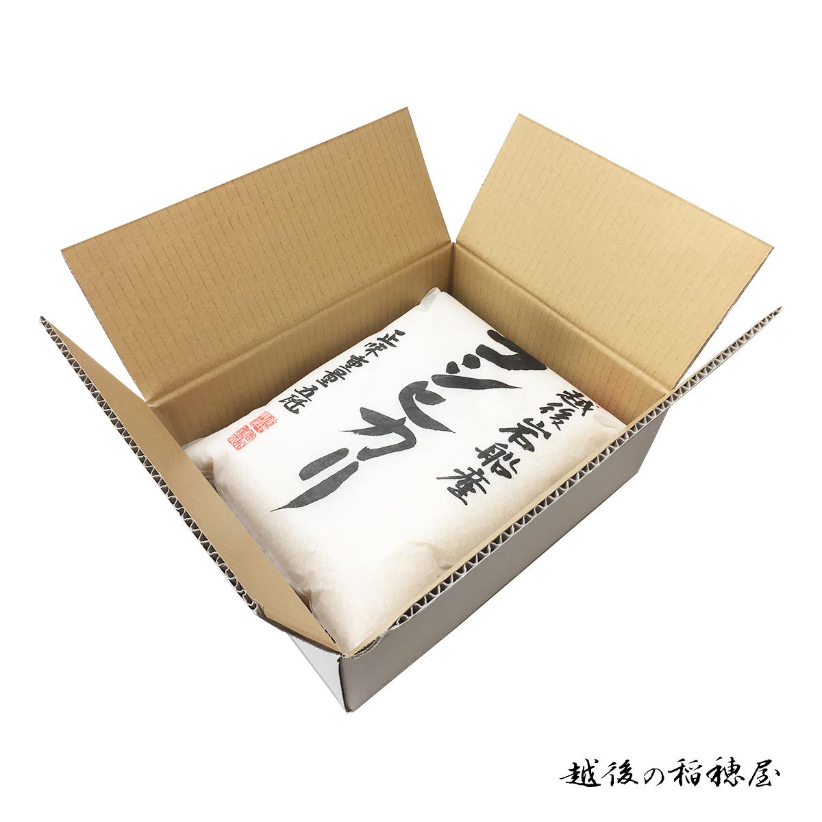新米 岩船産コシヒカリ10kg 白米 令和3年産